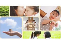 株式会社大地コーポレーション(草加市)建築、注文住宅、新築一戸建て