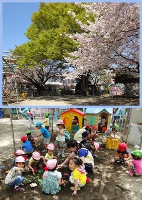 ひばり幼稚園 (さいたま市大宮区) 幼稚園