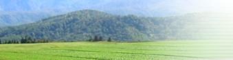 有限会社農業経営研究所(さいたま市見沼区)