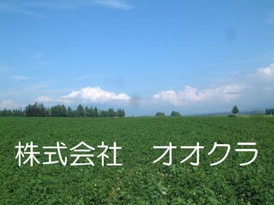 株式会社オオクラ(伊奈町)地盤調査・地盤改良工事