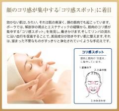 ポーラ化粧品しゅがあ営業所(さいたま市西区)エステ・化粧品販売