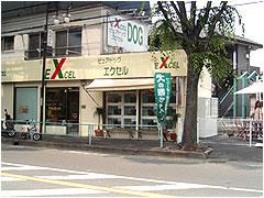 ピュアドッグ エクセル -PURE DOG EXCEL- (さいたま市 桜区) ペットショップ・ブリーダー直販専門店