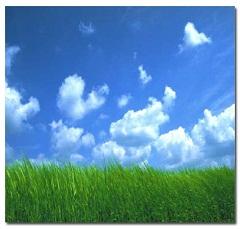 新埼玉環境センター 株式会社(埼玉県比企郡嵐山町)排水処理施設維持管理 道路・公園施設維持管理 ビルメンテナンス 廃棄物処理 給排水設備工事 一般土木工事