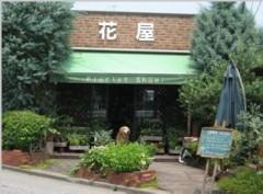 花屋 Florist Shuei(フローリスト シュウエイ)(埼玉県行田市)花屋
